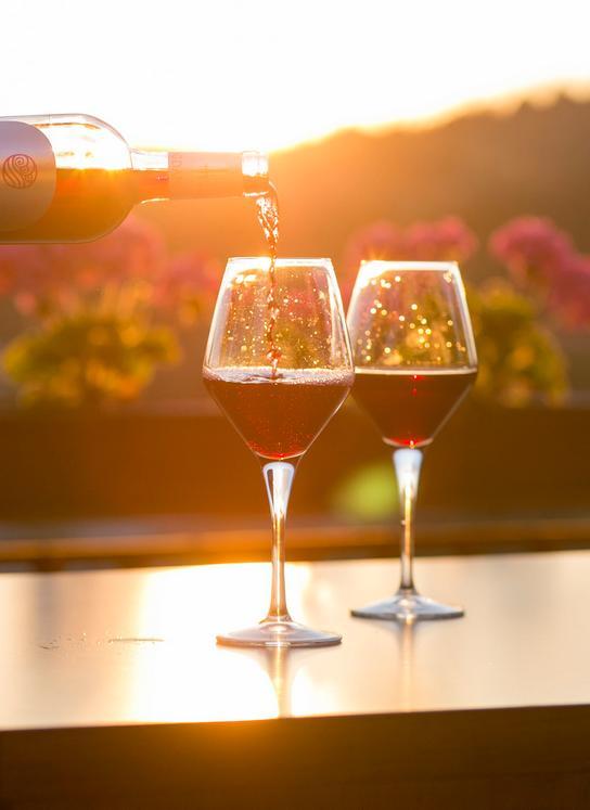 alsace colmar capitale des vins