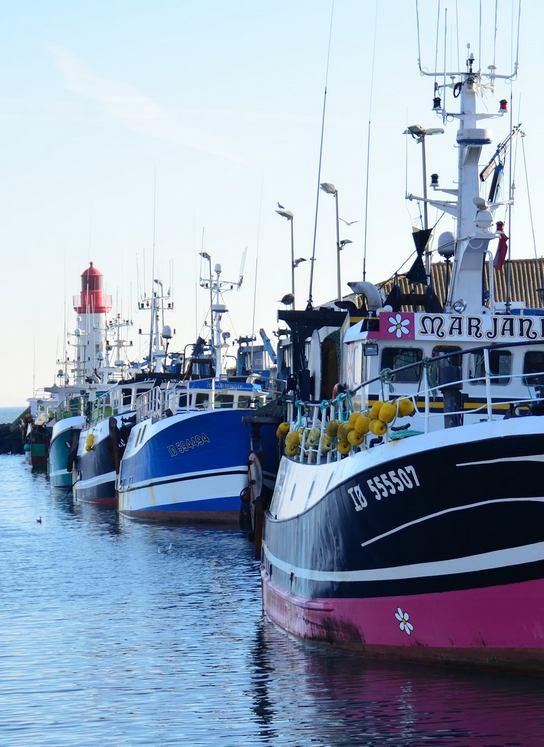 port cotiniere saint-pierre d'oleron oh ! activ'